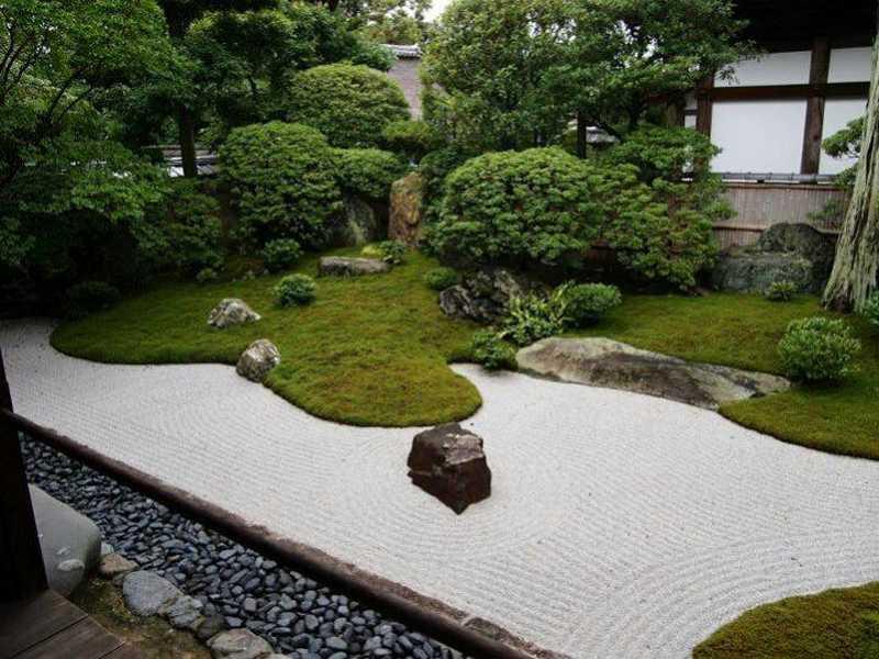 Giardino zen gatto idee per il design della casa for Come progettare il layout della casa